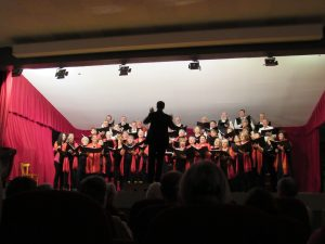 ENVOL'ART Concert Craponne sur Arzon 19-11-2017 Envol'Art R (67)